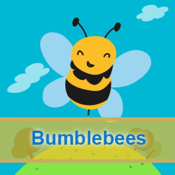 Bumblebees weps1 600x600