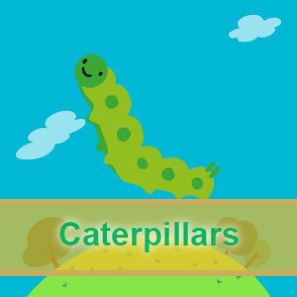 Caterpillars weps3 600x600